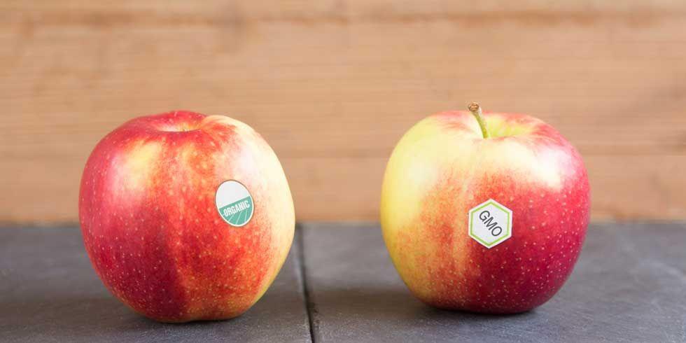 10 Bullsh*t Arguments Against GMOs
