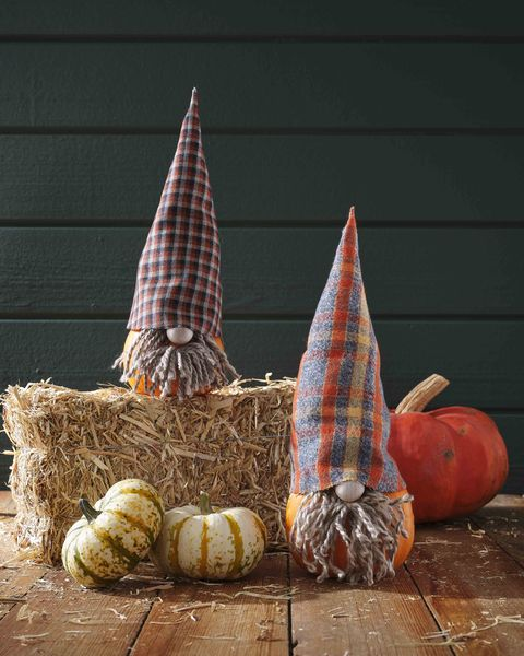 gnome pumpkin