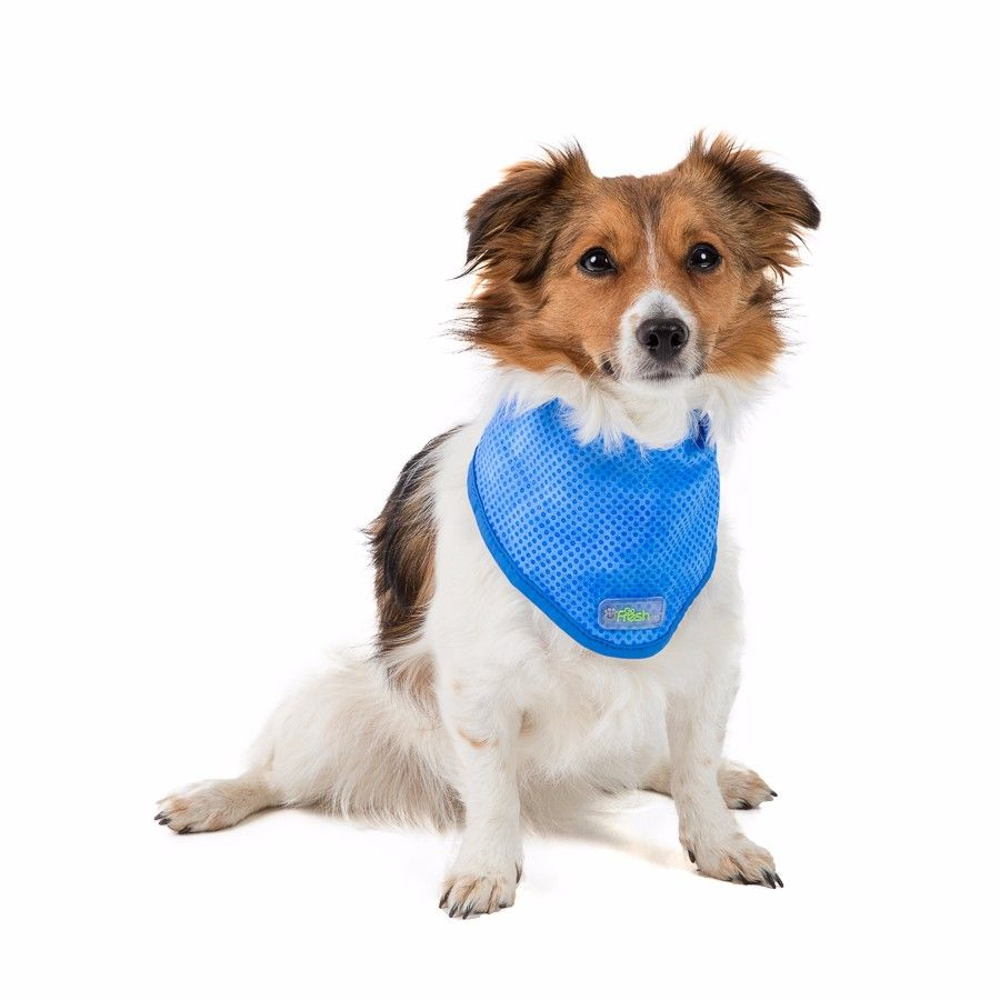 Go Fresh Pet Ice Cooling Dog Bandana - medium - Pets at Home