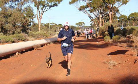 runner and dog Goldfields Pipeline Marathon