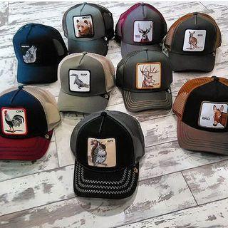 Gorras de Goorin Bros - Las gorras de animales que lleva todo el mundo ec797224ee2