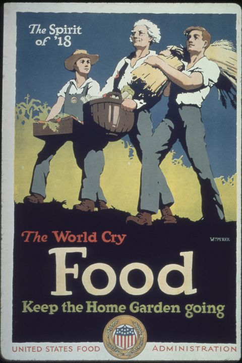 wwi food conservation effort    victory gardens