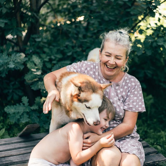 grandmother playing with her grandson and dog outdoors