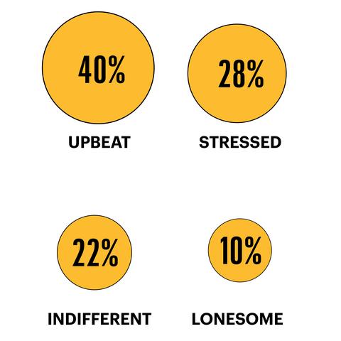 40 percent upbeat 28 percent stressed 22 percent indifferent 10 percent lonesome