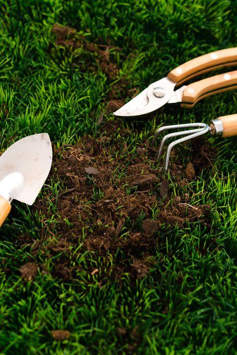 garden equipment on grass