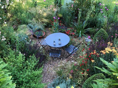 Adam Frost - gravel garden