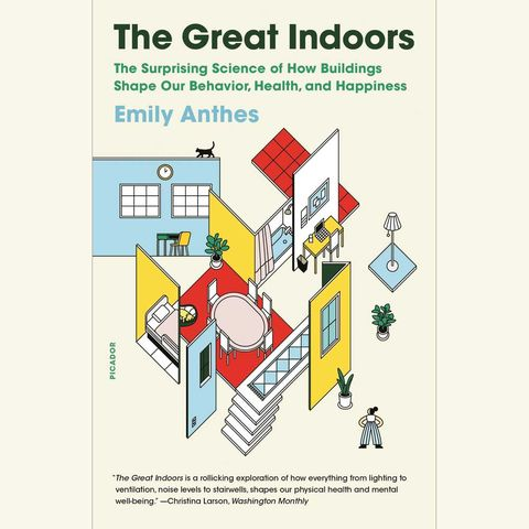 the great indoors, emily anthes