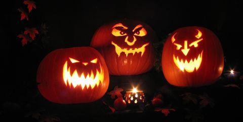 halloween festival great pumpkin carve