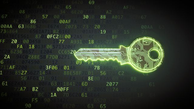 green circuit digital key on binary code
