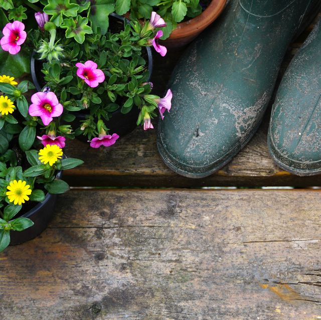 green gardening boots on old wooden table