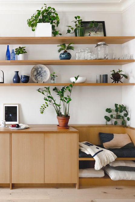 Shelf, Shelving, Furniture, Houseplant, Room, Wall, Interior design, Plant, Building, Wood,