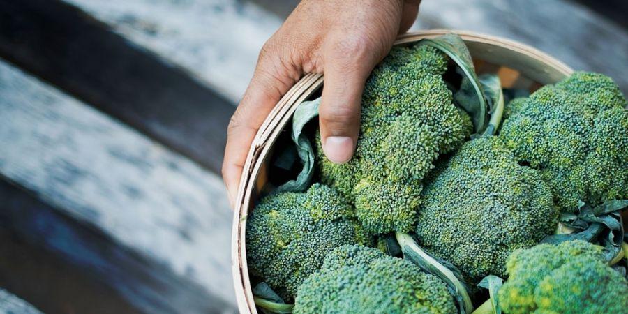 in welke voeding zitten eiwitten