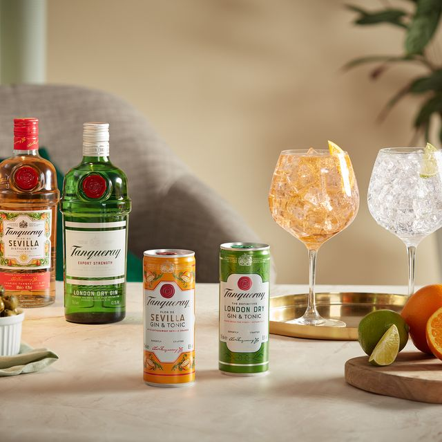 tanqueray gin and tonic cans