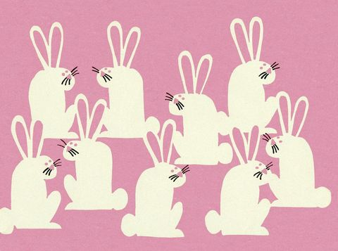 Rabbits and Hares, Hare, Rabbit, Illustration, Art,