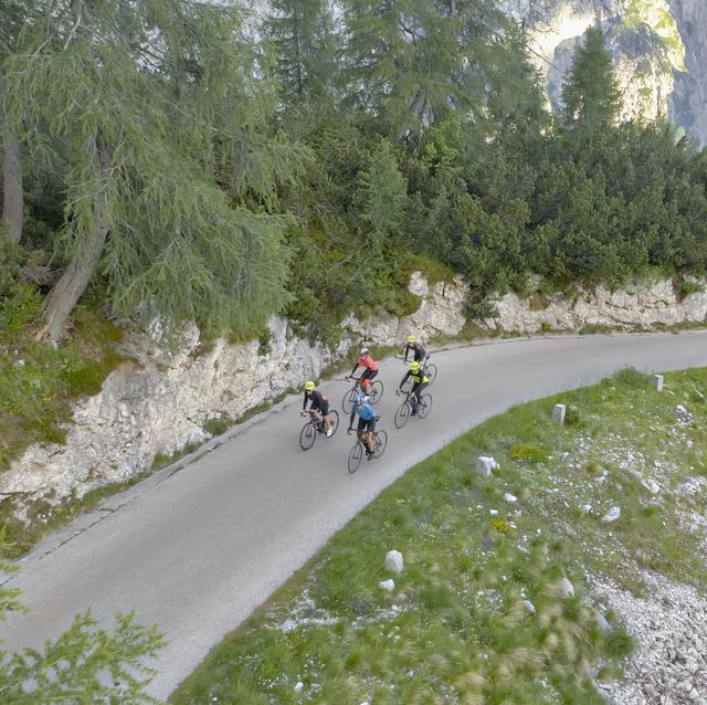 Group of road cyclists riding on beautiful mountain road surrounded by trees and mountains