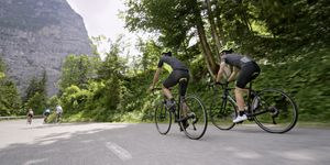 Group of road cyclists riding on beautiful mountain road surrounded by trees
