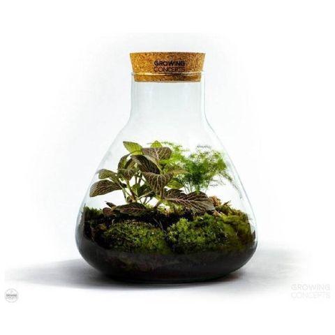 growing concepts diy duurzaam