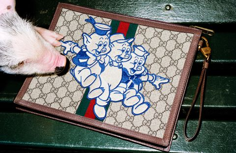 Textile, Wallet, Hand, Pattern, Illustration, Fashion accessory, Flooring, Glass,