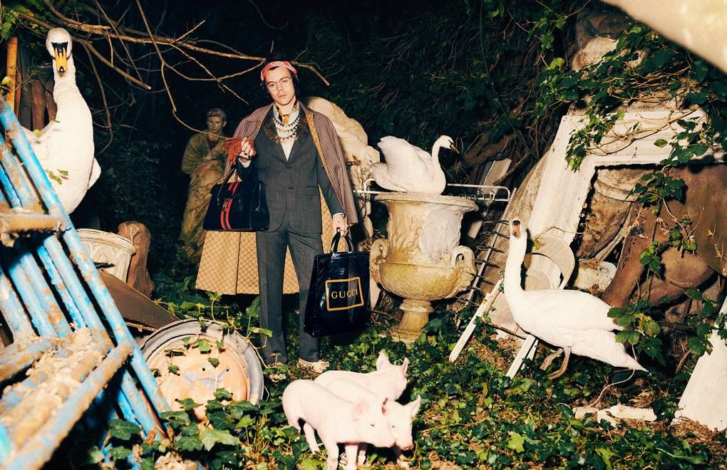 Gucci Harry Styles Tailoring Campaign