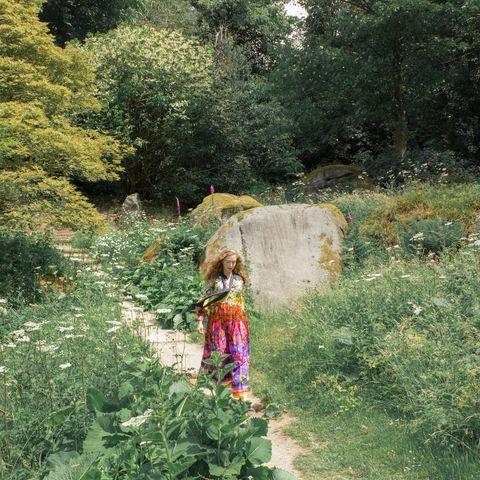 Nature, Vegetation, Grass, Natural landscape, Tree, Botany, Grass family, Shrub, Plant, Plant community,