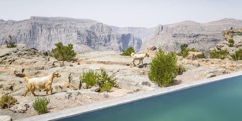 Anantara Al Jabal Al Akhdar