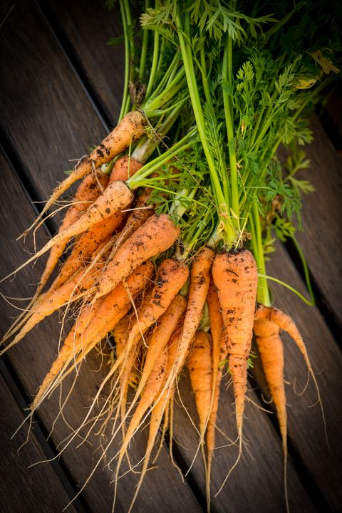 guide to root vegetables carrots