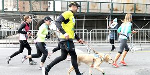 Guiding Eyes For The Blind President And CEO, Thomas Panek, Runs First-Ever 2019 United Airlines NYC Half Led Completely By Guide Dogs