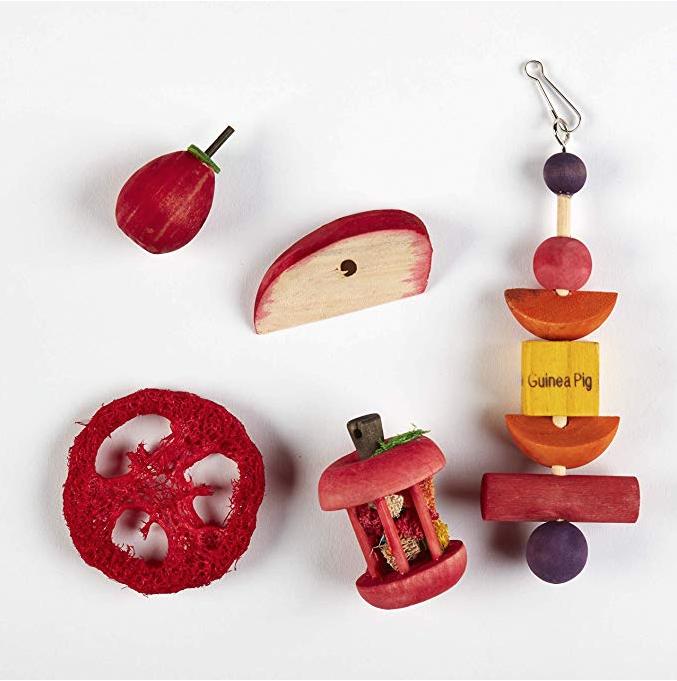 Guinea Pig Image Design Spinning Keyring in Gift Box