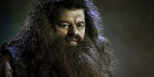 hagrid harry potter mortifago