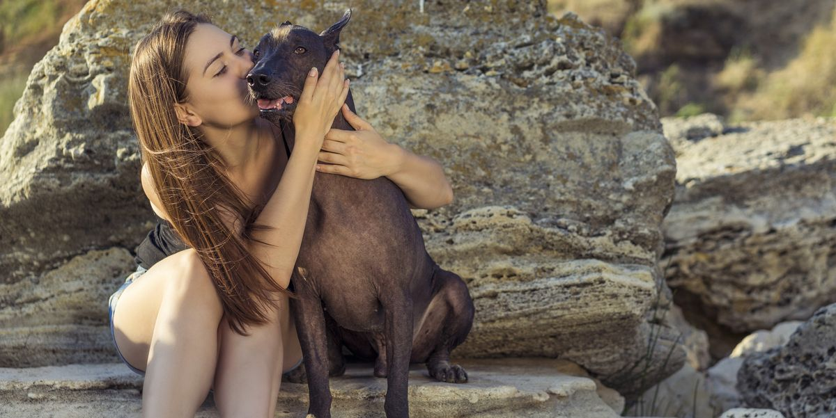 5 Hairless Dog Breeds That Are Sure to Capture Your Heart