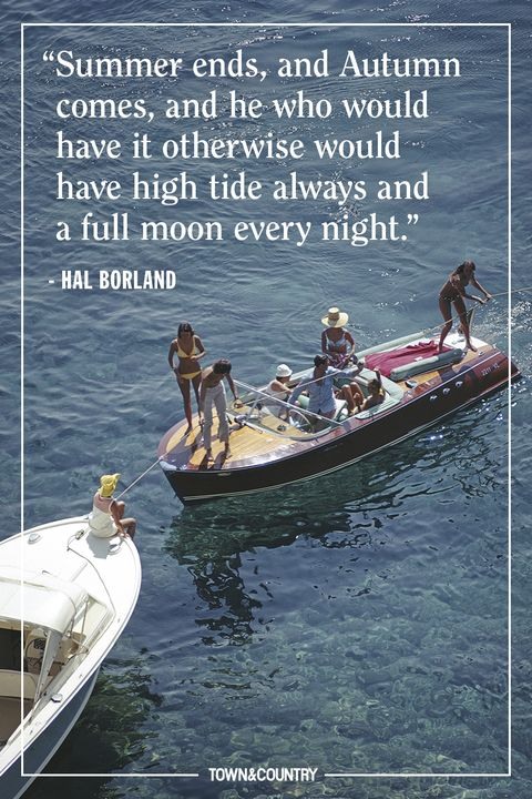 25 Best Summer Quotes 2019 Famous And Happy Quotes About