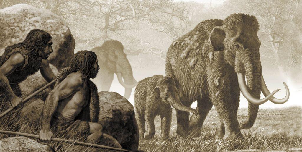 Descubren un trozo de lanza clavado en la costilla de un mamut