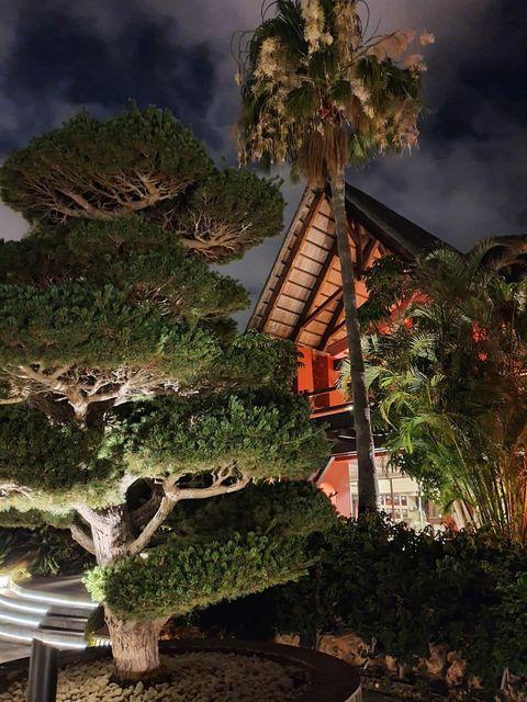 halloween 2020 hotel asia gardens