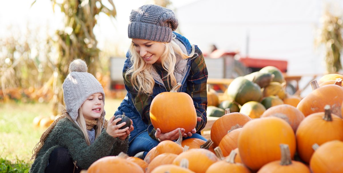 40 Best Halloween Activities Fun Halloween Things To Do At Home With Kids