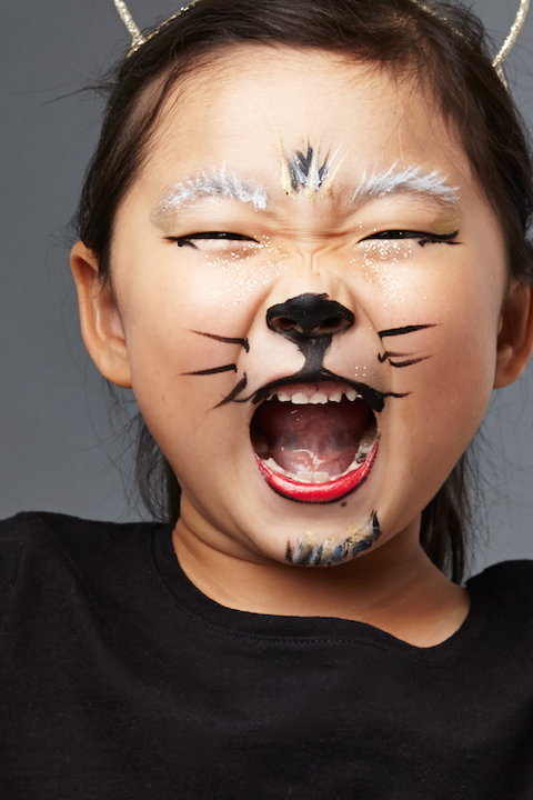 30 Halloween Face Paint Ideas Fun Face Painting For Kids