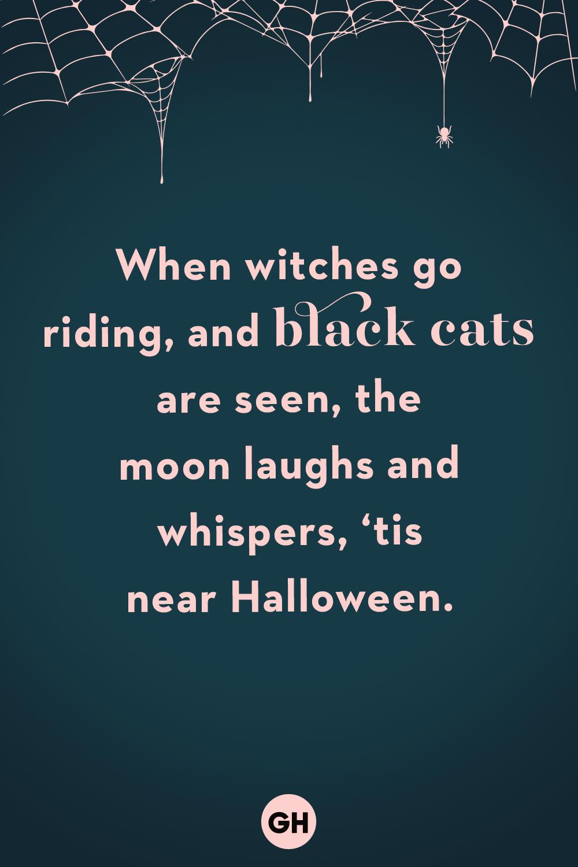 50 Spooky Halloween Quotes Best Halloween Sayings