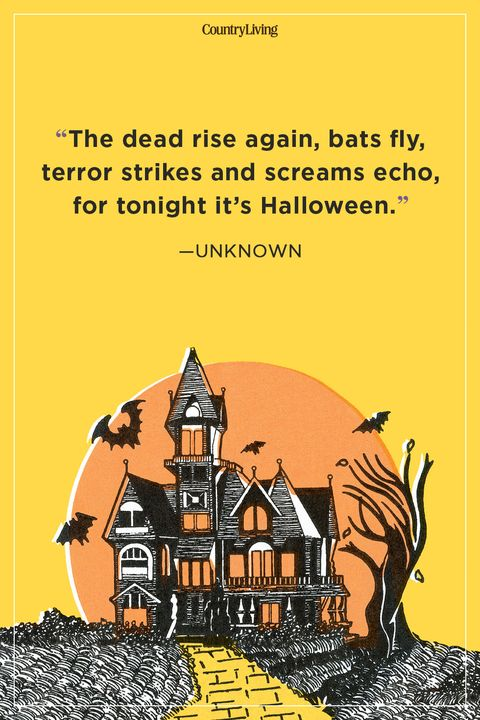 Halloween Phrases.54 Best Halloween Quotes Spooky Halloween Quotes And Sayings