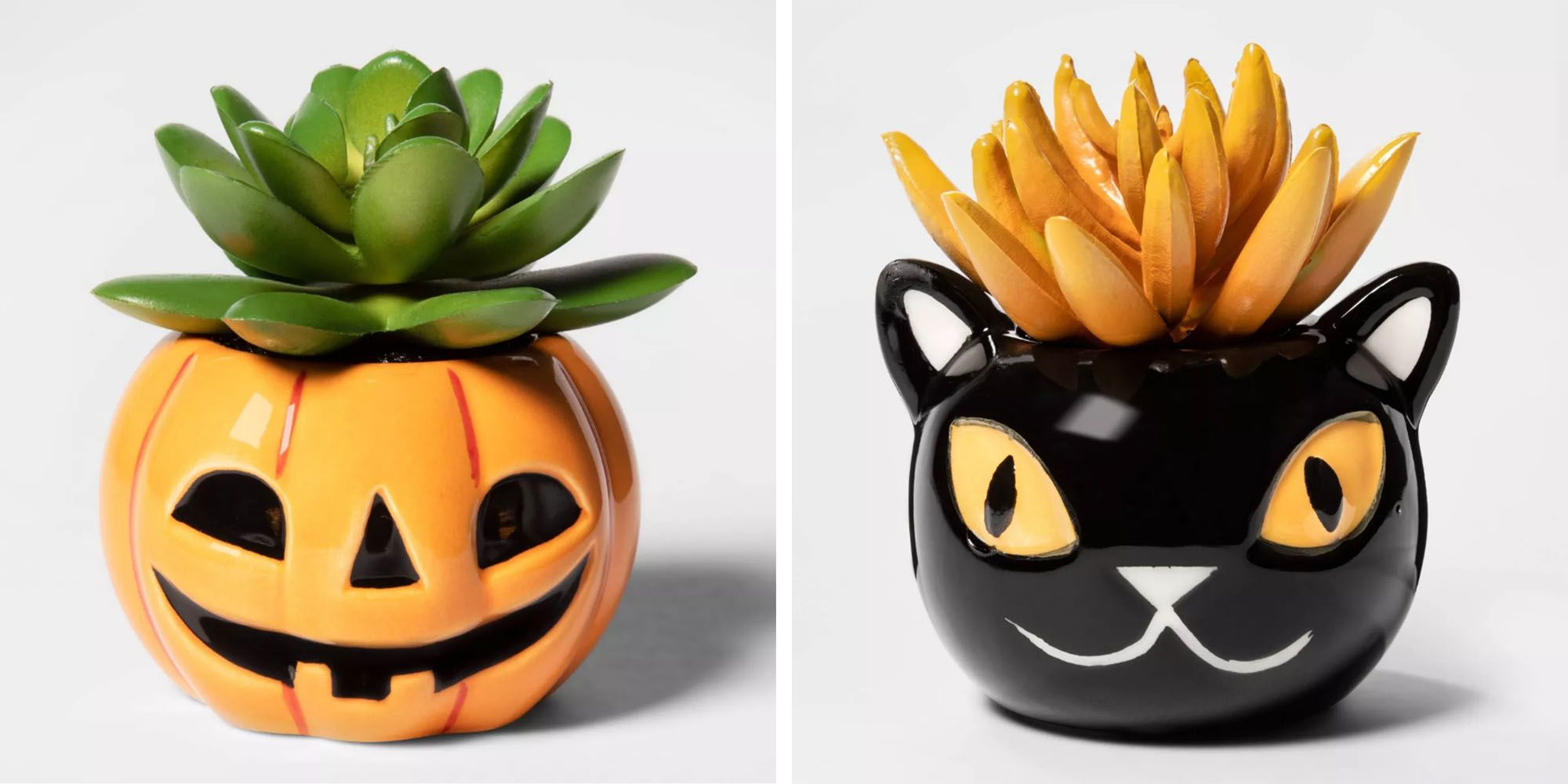 Target's New Halloween Succulent Selection Is So Good, We're Spooked