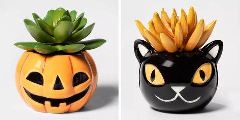 Fruit, Plant, Pumpkin, Pineapple, Food, Bromeliaceae, Smile,