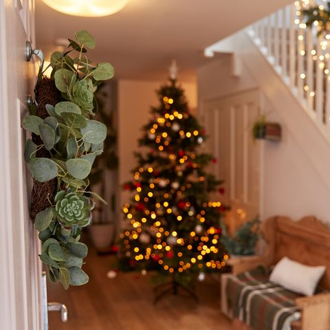 Hallway Of Home Decorated For Christmas Viewed Through Front Door