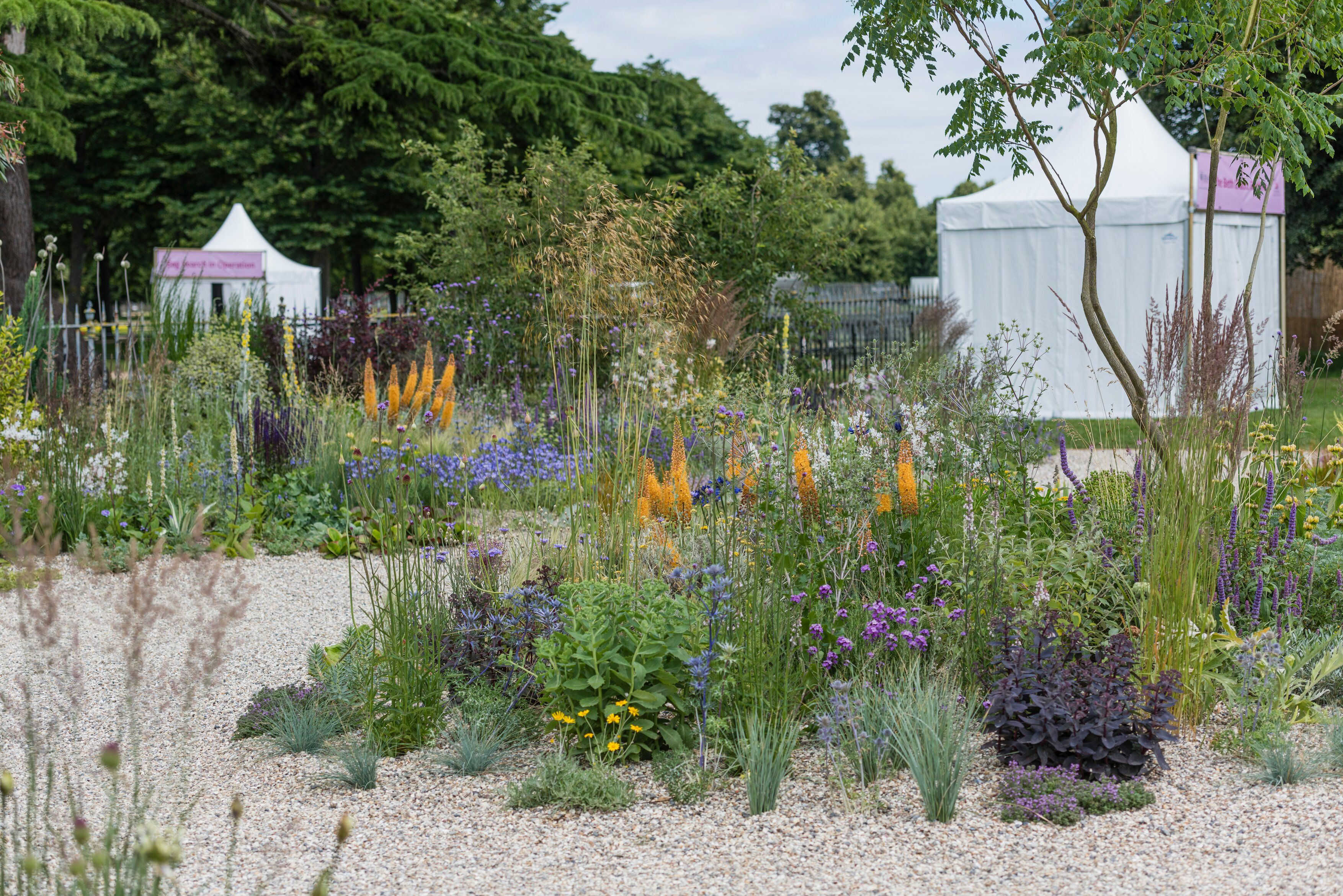 Inside Beth Chatto's drought-resistant garden at Hampton Court Palace Garden Festival 2019