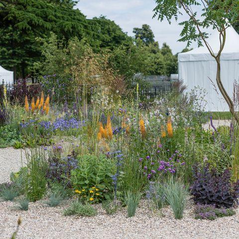 Beth Chatto garden at Hampton Court Palace Garden