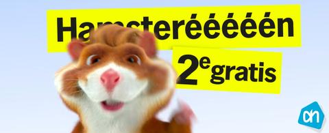 Hamster, Snout, Font, Muroidea, Photo caption, Rodent, Smile, Guinea pig,