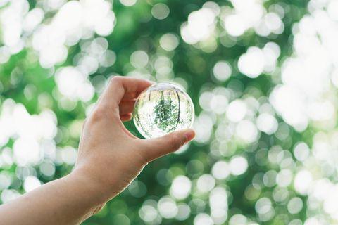 hand holding crystal ball against green trees bokeh