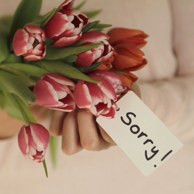 hands holding tulips bouquet with sorry message
