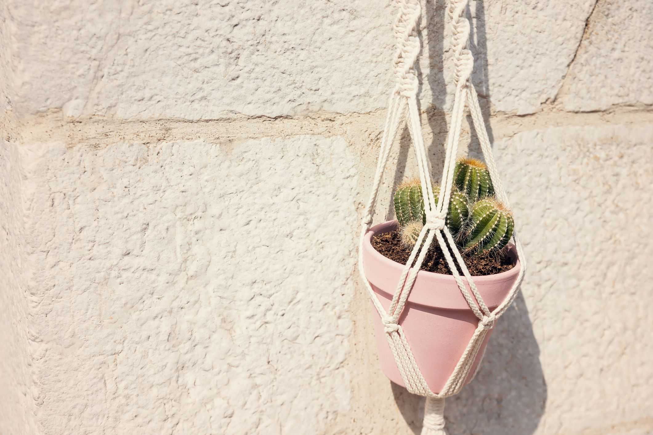 20 Diy Hanging Planters How To Make A