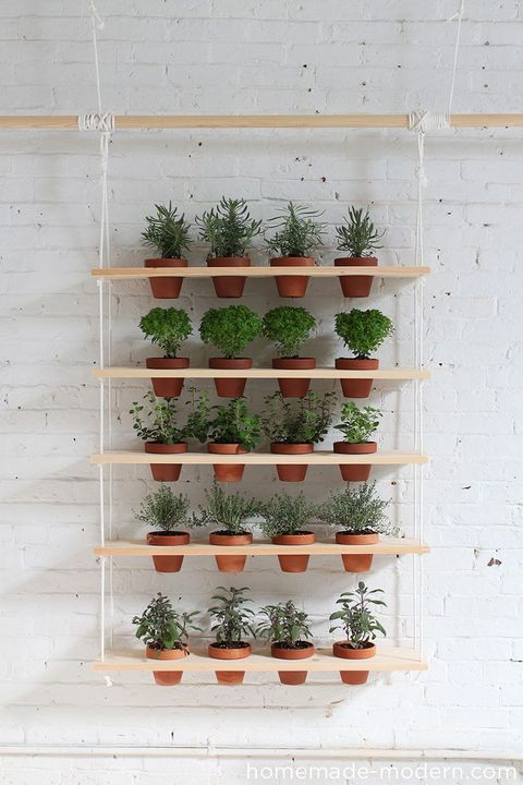 hanging planters shelf