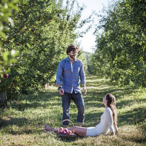 happy man looking at woman sitting with apple basket at orchard