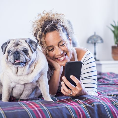 happy woman and nice dog together laying on bed enjoying love and friendship young pretty female people use phone cellular in video chat and smile best friend human animals domestic life