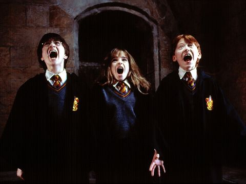 Harry Potter Hermione Ron